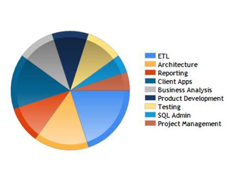 Sql ssrs report developer resume